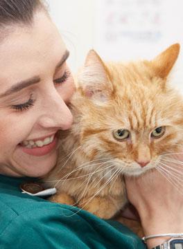 Veterinary nurse with cat